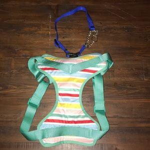 Collar and Harness Bundle